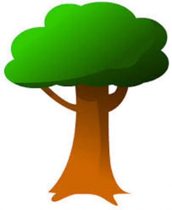 Journée Environnementale